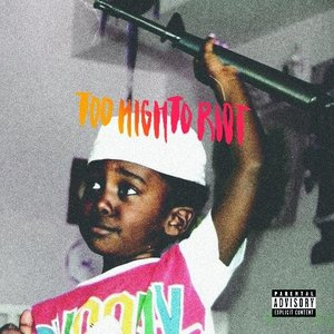 Album Review: Too High To Riot