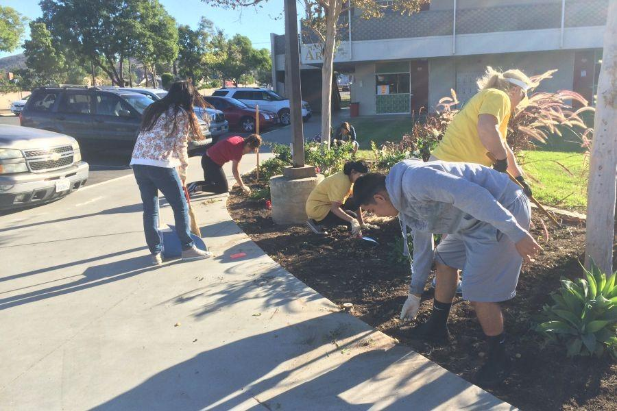 Students gardening at El Modena High School on November seventh at the Vanguard Pride day.