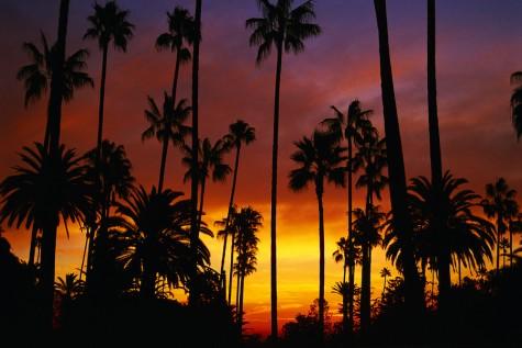 The beautiful sunset on the California beaches.