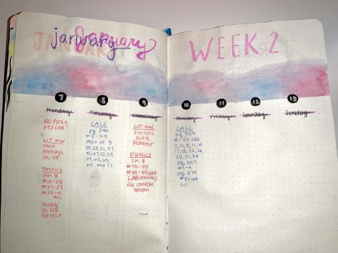 Here is a spread for January Week 2, but it can be customizable to any month.